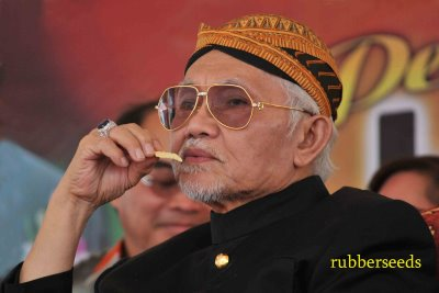 http://dinmerican.files.wordpress.com/2010/08/taib-mahmud.jpg
