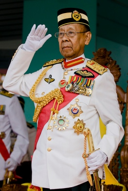 Image result for The King of Malaysia