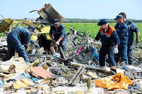 MH17 Crash Site 3