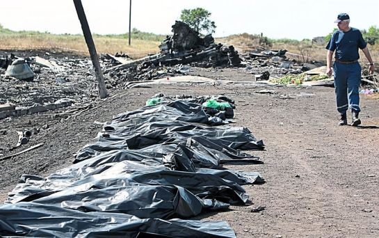 MH17 Crash Site 4
