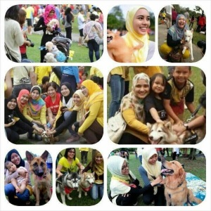 Touch a Dog Event