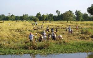 Cambodia-Battambang_Provinz