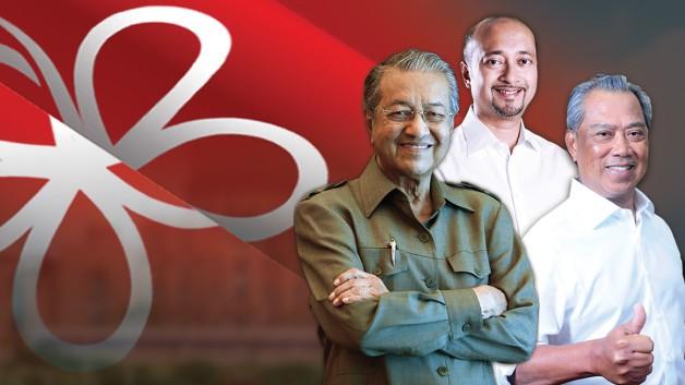 Image result for parti pribumi bersatu malaysia logo
